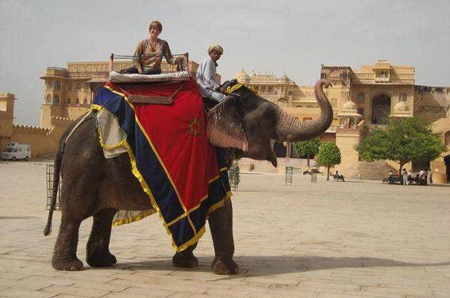 RTDC Sightseeing Tours:  7 Top Things To Do In Jaipur